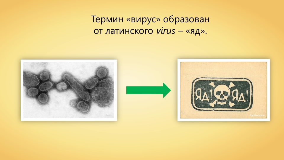 http://forumupload.ru/uploads/0000/08/3f/2/689053.jpg