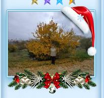 http://forumupload.ru/uploads/0000/14/1c/31992/894510.png