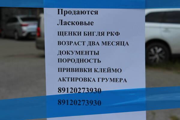 http://forumupload.ru/uploads/0000/1c/6a/2372/t682832.jpg