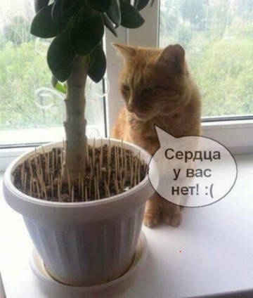 http://forumupload.ru/uploads/0001/d1/67/5682/t199569.jpg