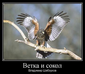 http://forumupload.ru/uploads/0002/72/3f/23479/t397409.png
