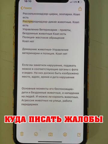 http://forumupload.ru/uploads/0002/c6/8a/2/t625047.jpg