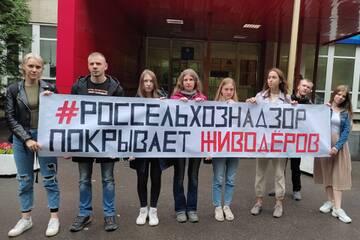 http://forumupload.ru/uploads/0002/c6/8a/2/t709726.jpg