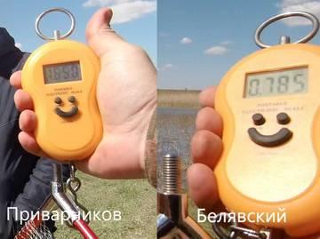 http://forumupload.ru/uploads/0002/f9/2d/3073/t421139.jpg