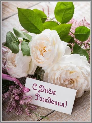 http://forumupload.ru/uploads/0005/59/73/2/t748386.jpg