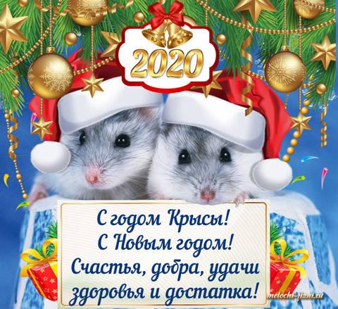 http://forumupload.ru/uploads/0005/59/73/8/t37395.jpg