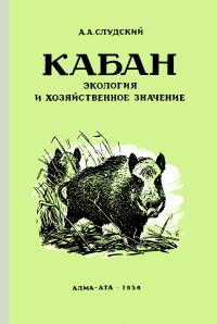 http://forumupload.ru/uploads/0008/03/58/5842-1-f.jpg