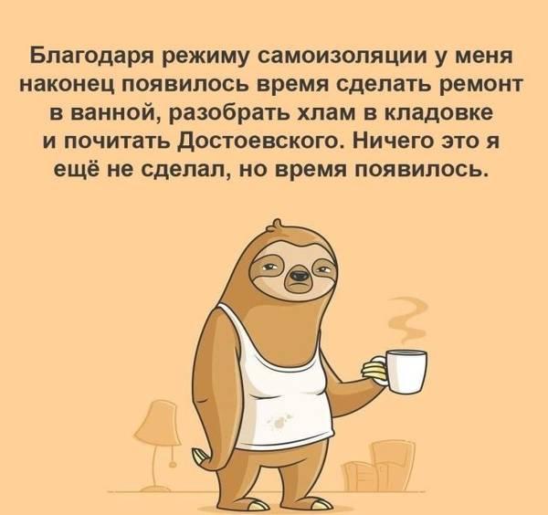 http://forumupload.ru/uploads/000a/3f/42/33/t851079.jpg