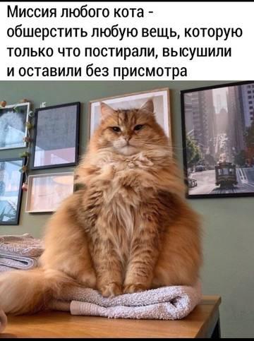 http://forumupload.ru/uploads/000a/3f/42/512/t765262.jpg