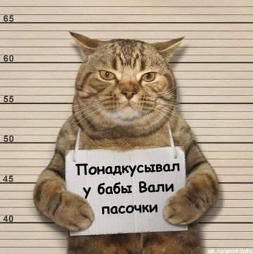 http://forumupload.ru/uploads/000a/3f/42/534/t115431.jpg