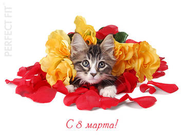 http://forumupload.ru/uploads/000a/3f/42/534/t20348.jpg