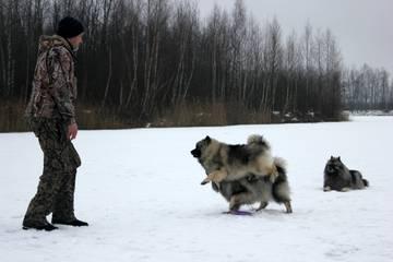 http://forumupload.ru/uploads/000c/14/61/156/t25417.jpg