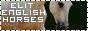 Elit English Horses...Окунись в мир лошадей