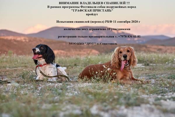 http://forumupload.ru/uploads/000e/d2/14/7/t814625.jpg