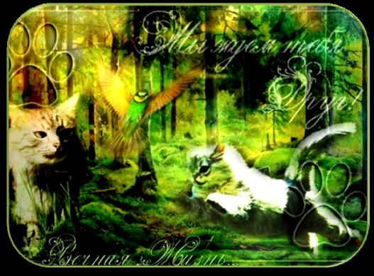 http://forumupload.ru/uploads/000e/e2/4e/198-1-f.png