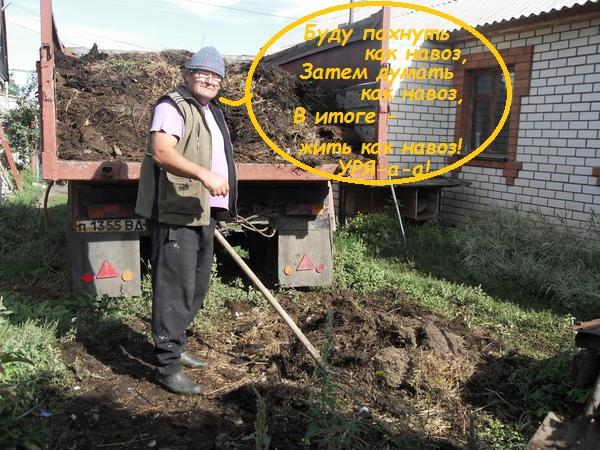 http://forumupload.ru/uploads/000f/a0/99/259/t499616.jpg