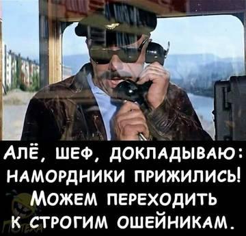 http://forumupload.ru/uploads/000f/b9/e8/249/t695372.jpg