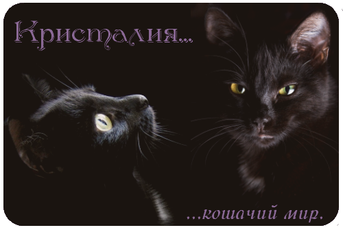 http://forumupload.ru/uploads/0010/19/13/119-1-f.png