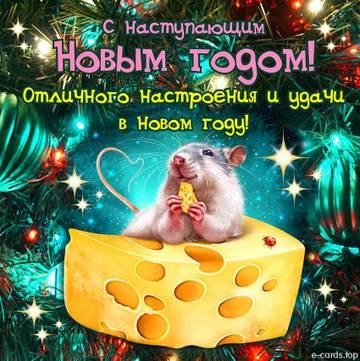 http://forumupload.ru/uploads/0010/59/7c/94/t83728.jpg