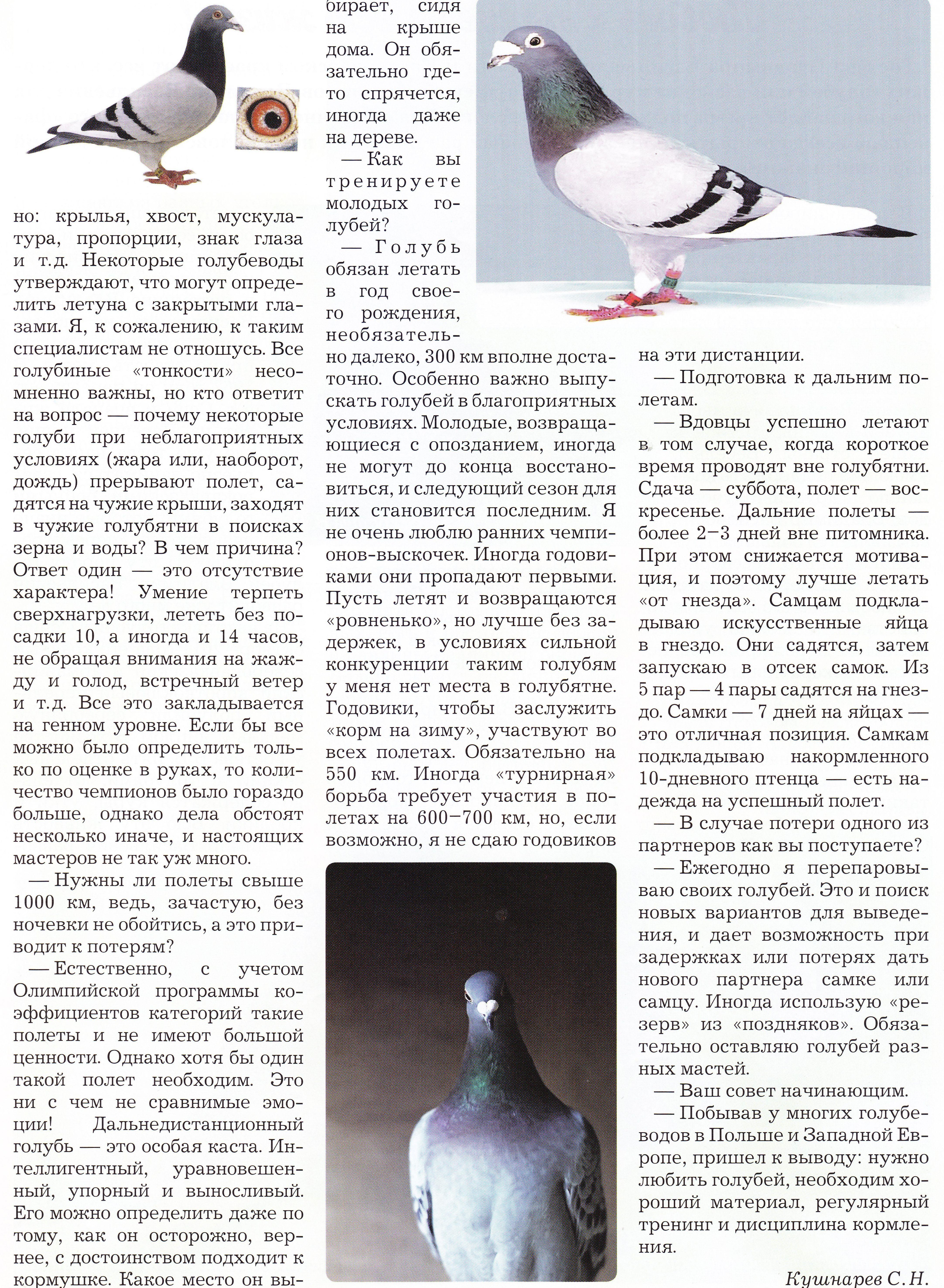 http://forumupload.ru/uploads/0012/5a/ef/2/55989.jpg