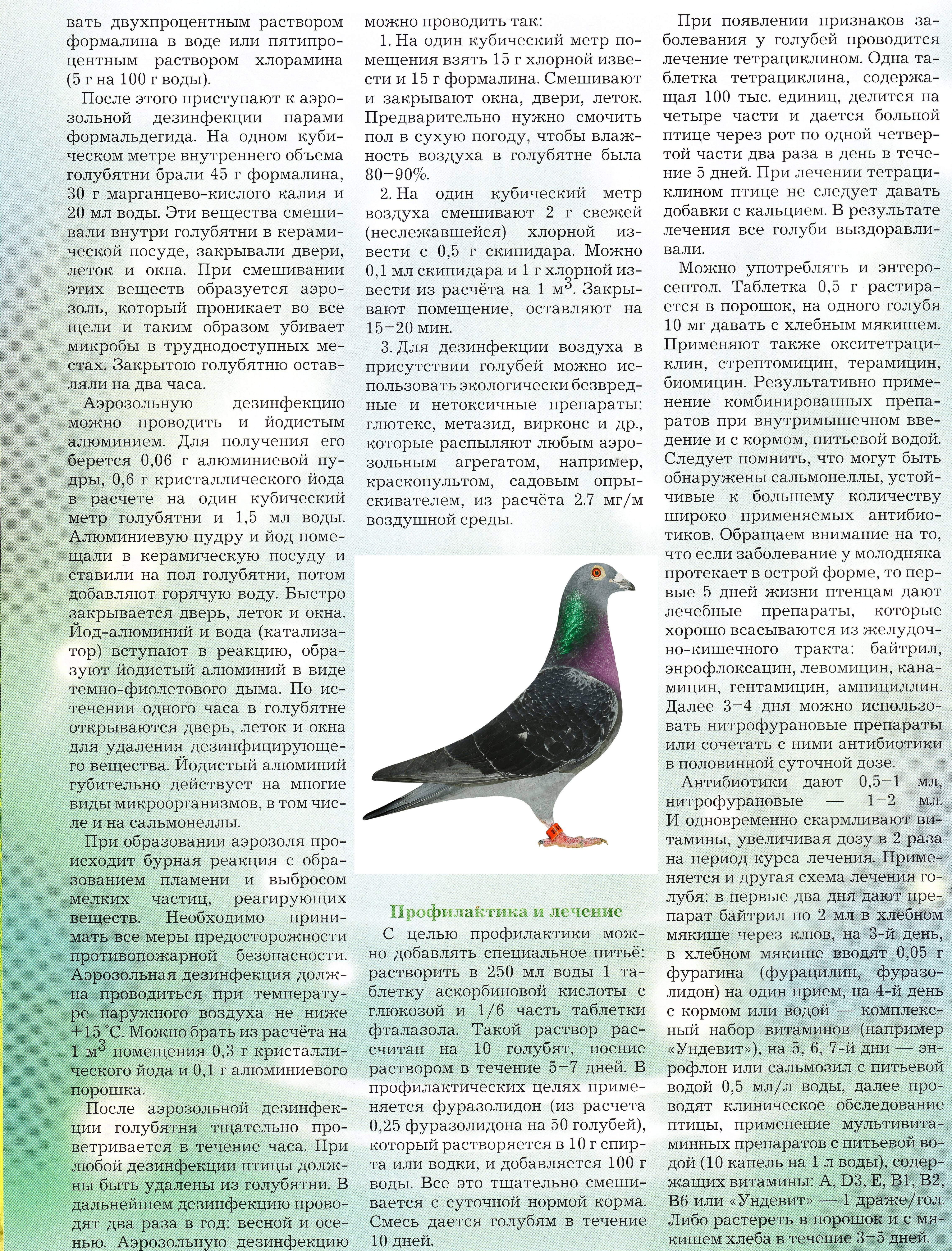 http://forumupload.ru/uploads/0012/5a/ef/2/646775.jpg