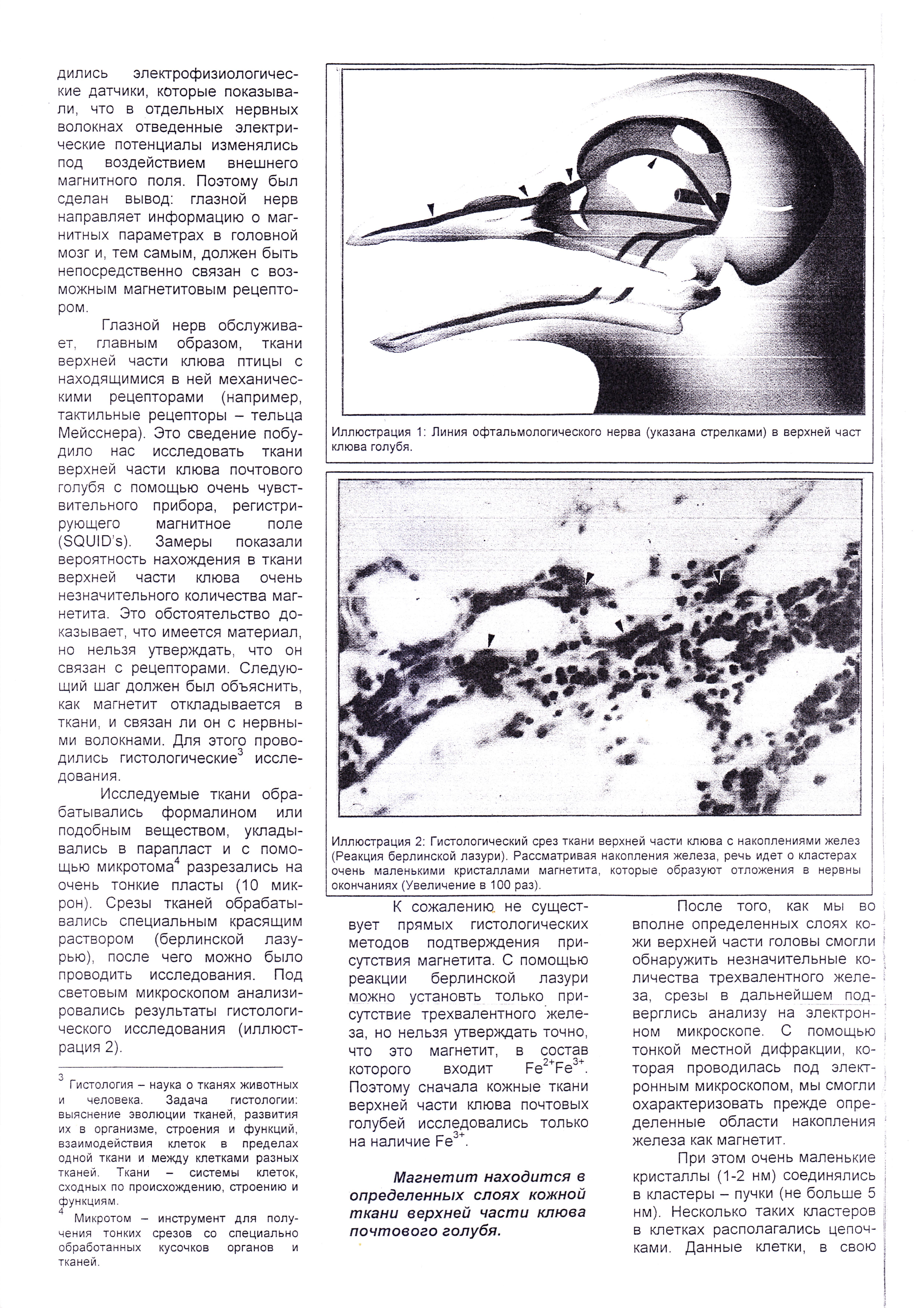 http://forumupload.ru/uploads/0012/5a/ef/2/687914.jpg