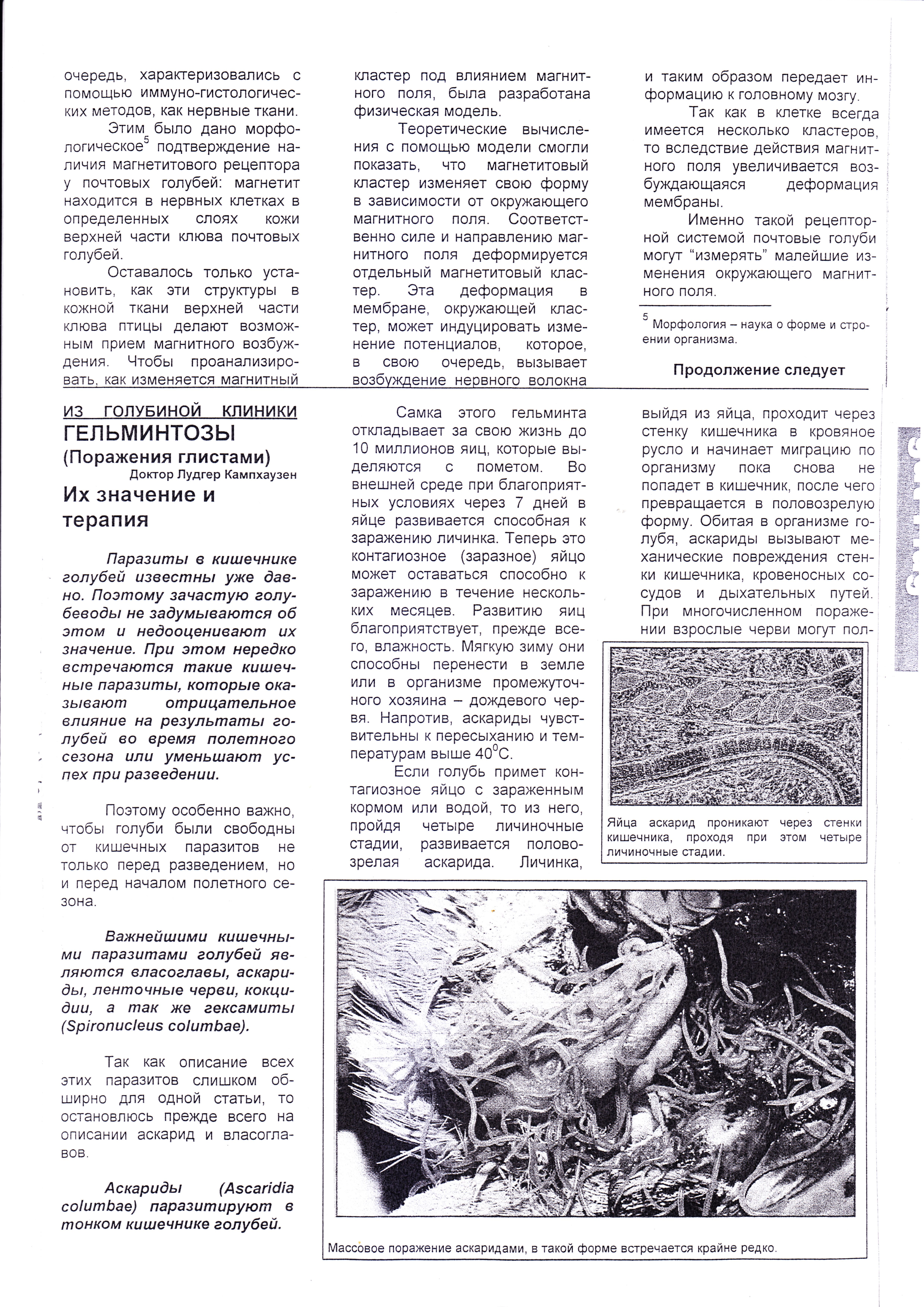 http://forumupload.ru/uploads/0012/5a/ef/2/928936.jpg