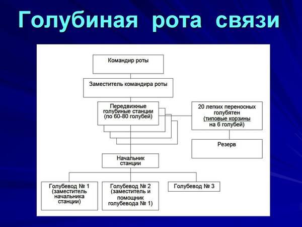 http://forumupload.ru/uploads/0012/5a/ef/2/t205706.jpg