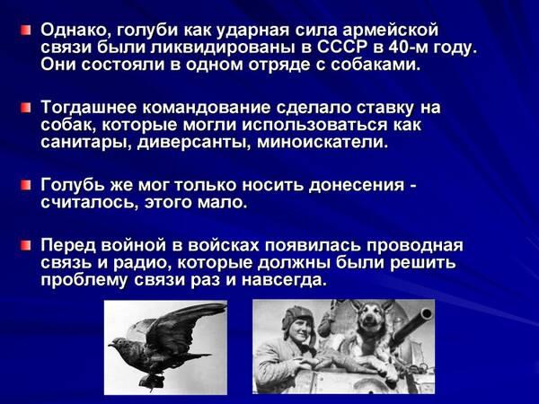 http://forumupload.ru/uploads/0012/5a/ef/2/t285616.jpg