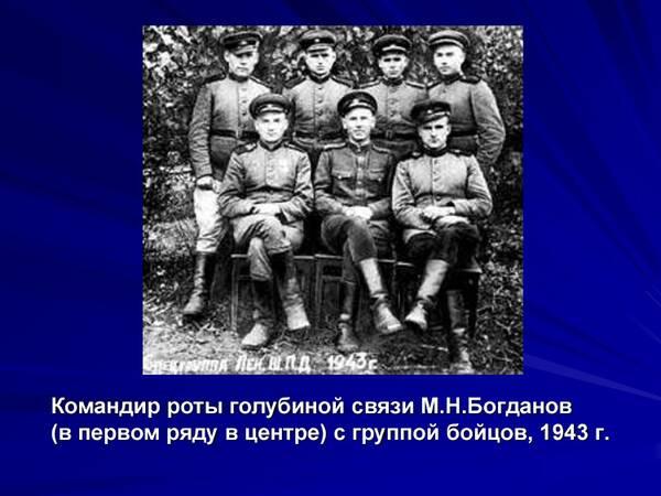 http://forumupload.ru/uploads/0012/5a/ef/2/t357563.jpg