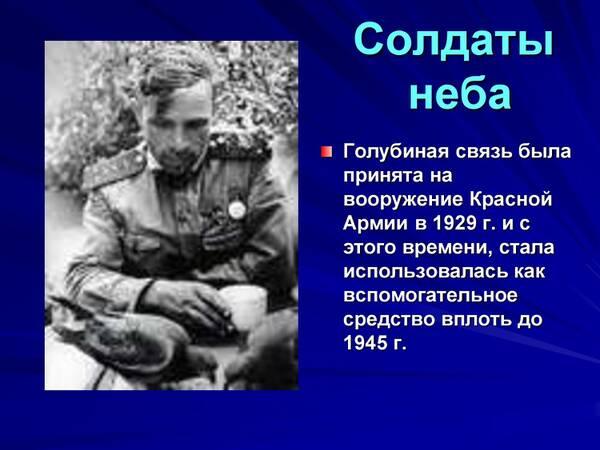 http://forumupload.ru/uploads/0012/5a/ef/2/t615312.jpg