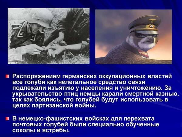 http://forumupload.ru/uploads/0012/5a/ef/2/t970452.jpg