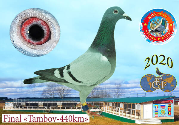 http://forumupload.ru/uploads/0012/5a/ef/279/t24111.jpg