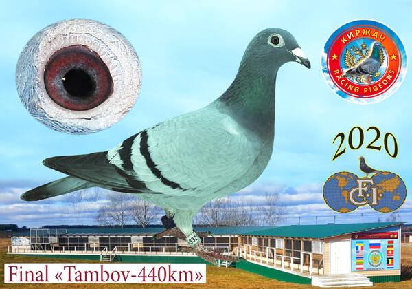 http://forumupload.ru/uploads/0012/5a/ef/279/t33218.jpg