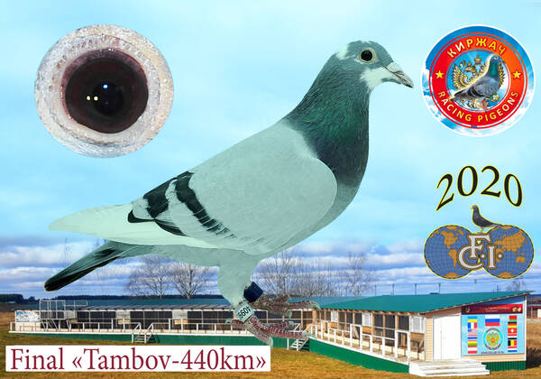 http://forumupload.ru/uploads/0012/5a/ef/279/t40993.jpg