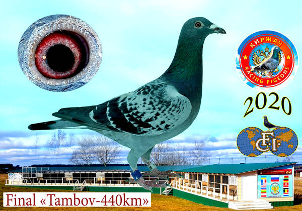 http://forumupload.ru/uploads/0012/5a/ef/279/t700504.jpg