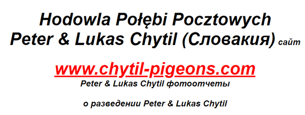 http://forumupload.ru/uploads/0012/5a/ef/279/t744067.png
