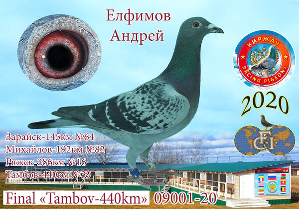 http://forumupload.ru/uploads/0012/5a/ef/279/t758216.jpg