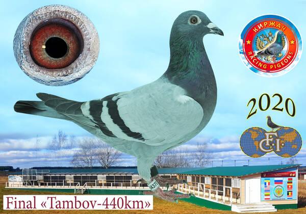 http://forumupload.ru/uploads/0012/5a/ef/279/t809323.jpg