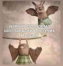 http://forumupload.ru/uploads/0012/c8/8c/9/t386380.jpg