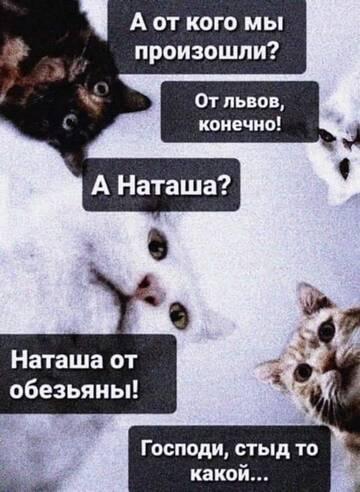 http://forumupload.ru/uploads/0012/d6/0d/887/t452552.jpg