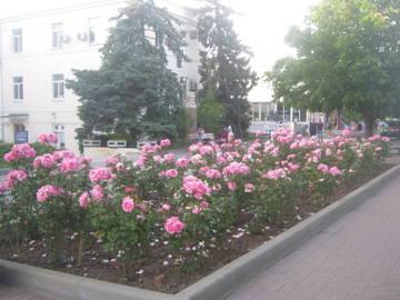 http://forumupload.ru/uploads/0013/1f/fe/411/t334242.jpg