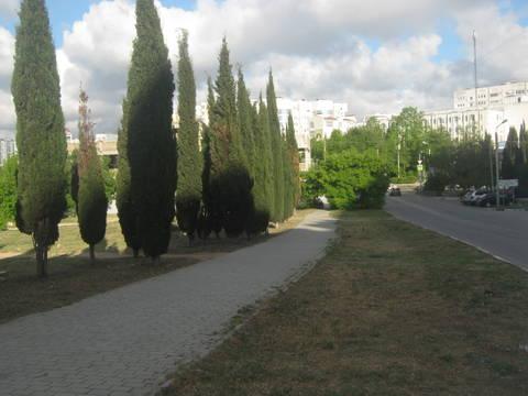 http://forumupload.ru/uploads/0013/1f/fe/411/t381489.jpg