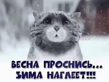 http://forumupload.ru/uploads/0013/1f/fe/411/t674221.jpg