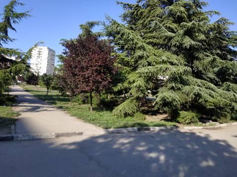 http://forumupload.ru/uploads/0013/1f/fe/411/t913988.jpg