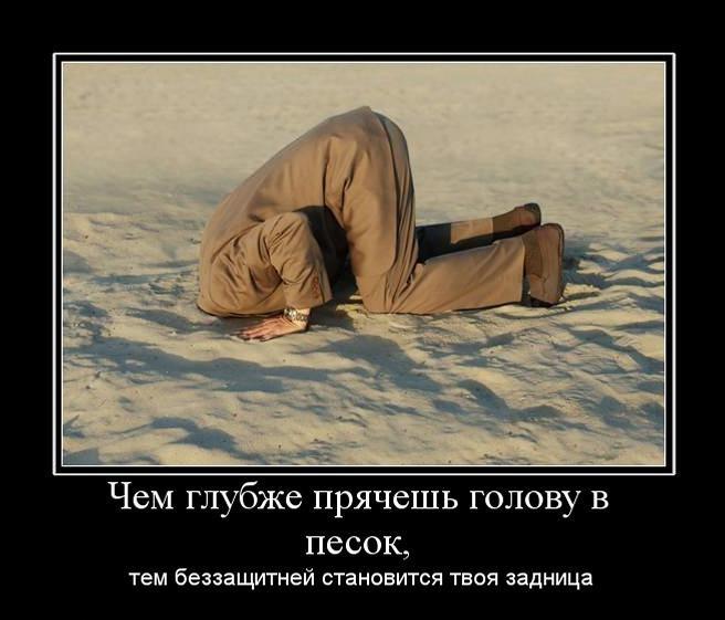 http://forumupload.ru/uploads/0014/75/e6/2/31403.jpg