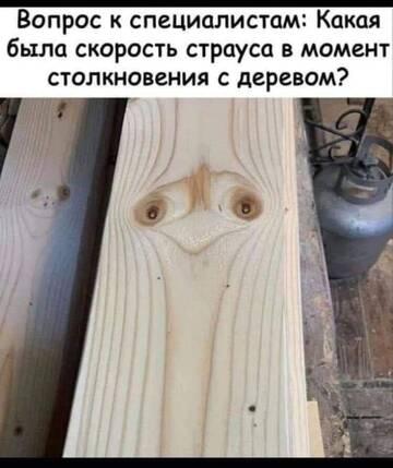 http://forumupload.ru/uploads/0015/14/ca/6/t608847.jpg