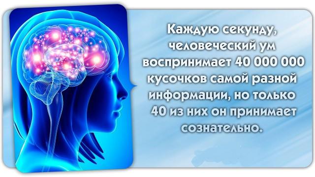 http://forumupload.ru/uploads/0015/99/60/3/965447.png