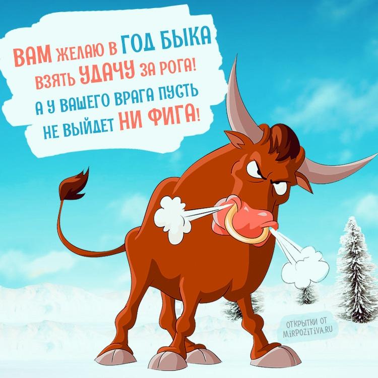 http://forumupload.ru/uploads/0016/c4/68/16/397360.jpg