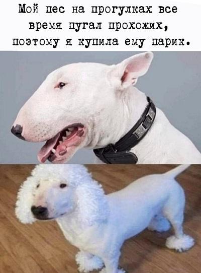 http://forumupload.ru/uploads/0016/c4/68/44/333285.jpg